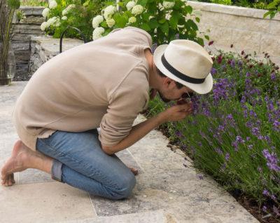 Wir erhalten Ihren Garten über viele Jahre blühfreudig und vital!