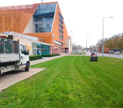 Pflege für Unternehmens- und Gemeinde-Grünanlagen